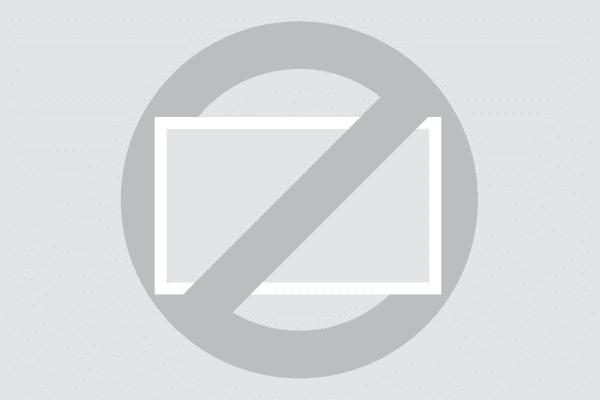 12 tums bildskärm (vit)